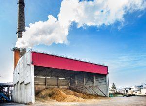 Biokuras pinga – šilumos kaina mažėja